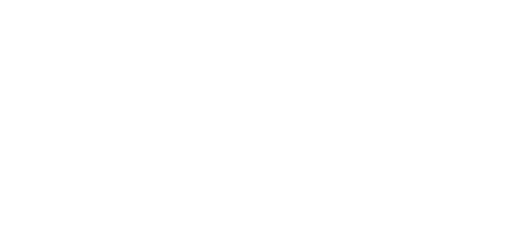 Financial Times Innovative Lawyers